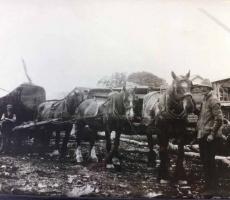 border-hardwood-first-work-generation