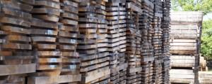 Small Oak timber pile